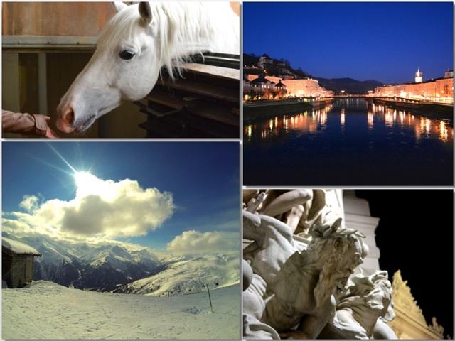 A World of Color: Austria in White