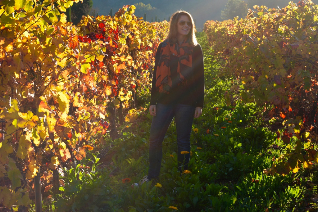 Provence Rose Wine8