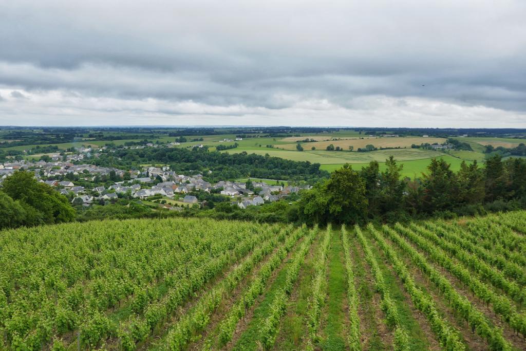 Loire Valley Wines_Leah Walker14