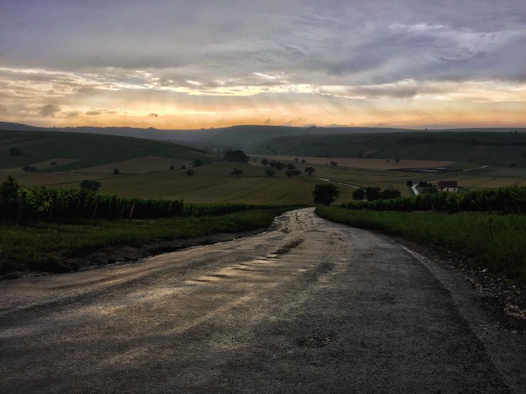 Loire Valley Wines_Leah Walker16