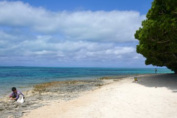 A Southeast Asia Alternative: Reasons to Visit Okinawa Japan