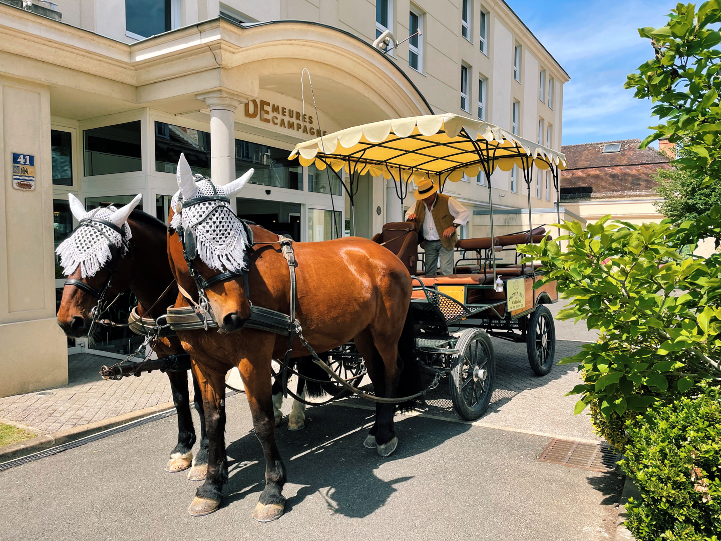 fontainebleau horse drawn carriage
