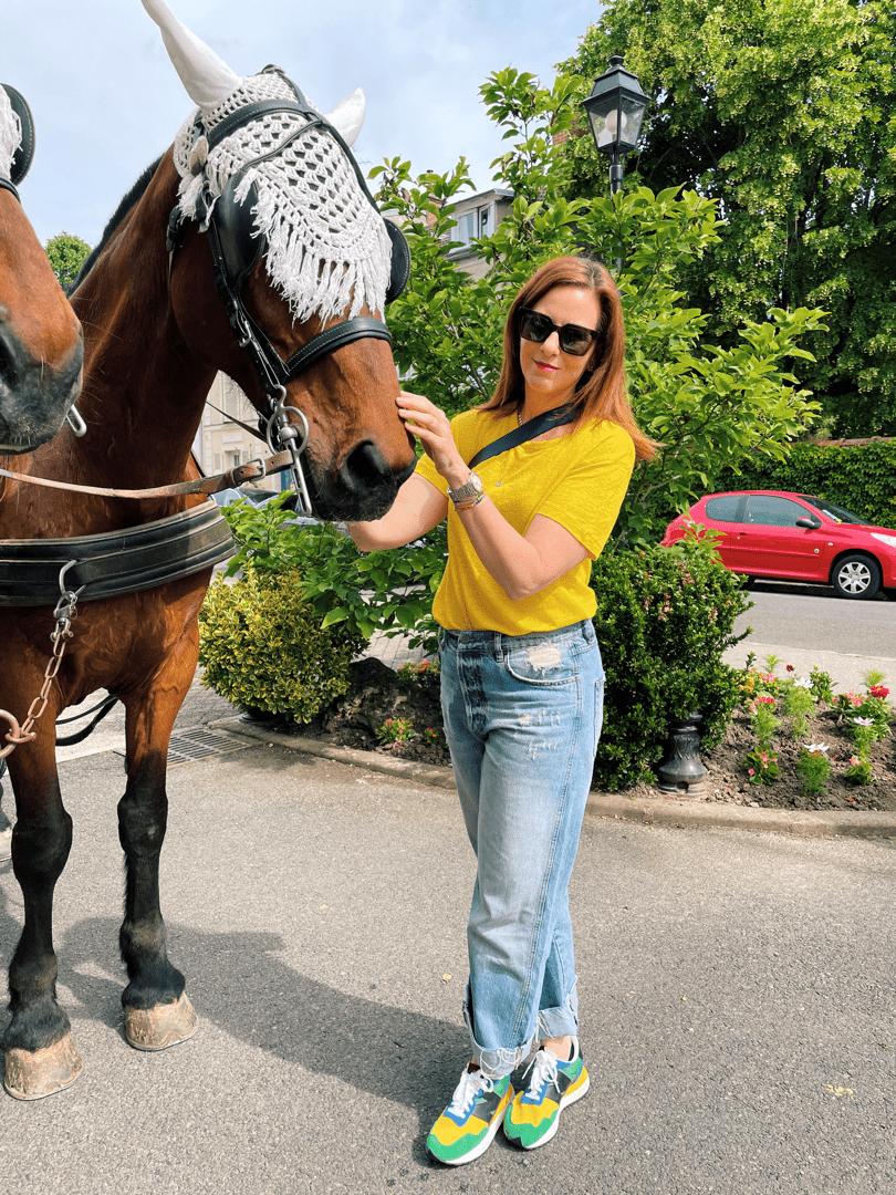 Leah Walker horses in Fontainebleau
